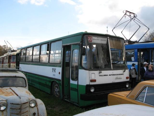 IMG 0649