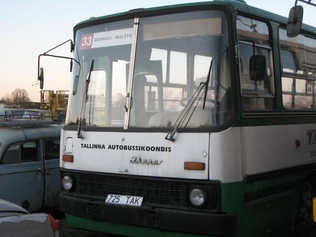 IMG 1486