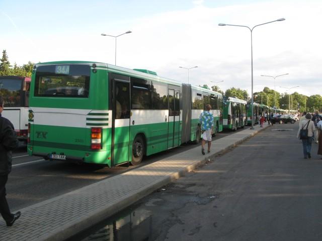 IMG 2619