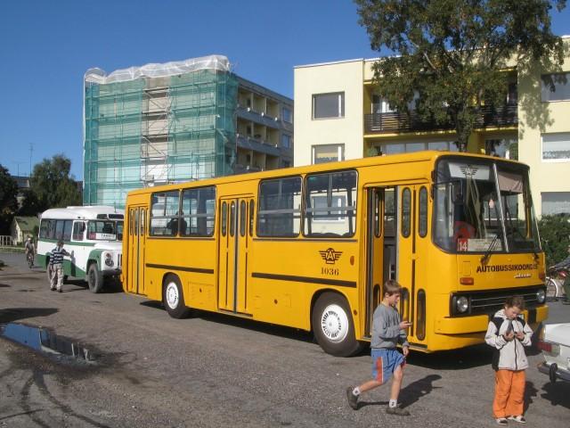 IMG 3803