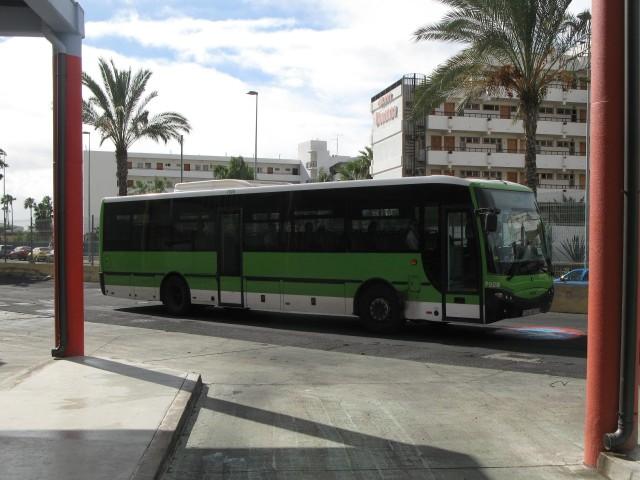 7294 CMT - 2010.12.29, Las Americas bussijaam