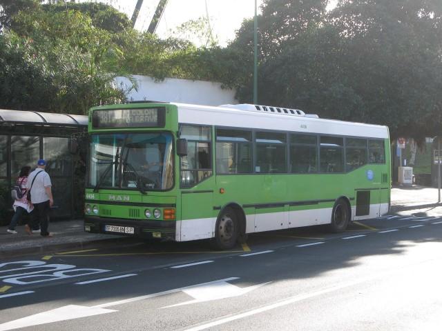 TF 7335 BN - 2010.12.25-2, Puerto de La Cruz
